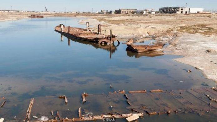 """روسها مسیر رودخانههای منتهی به دریاچه آرال را برای کشت پنبه - چیزی که به """"طلای سفید"""" ملقب بود - تغییر دادند"""