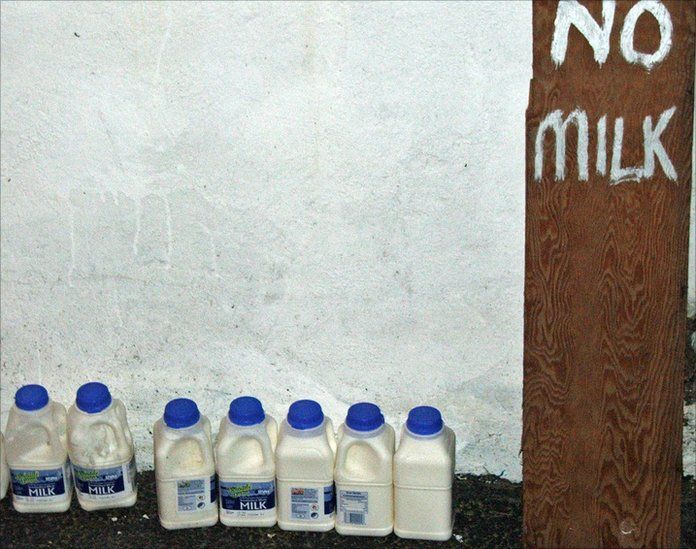 Milk cartons lined up against a wall