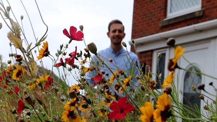 Gloucestershire wildflower garden gets Twitter attention