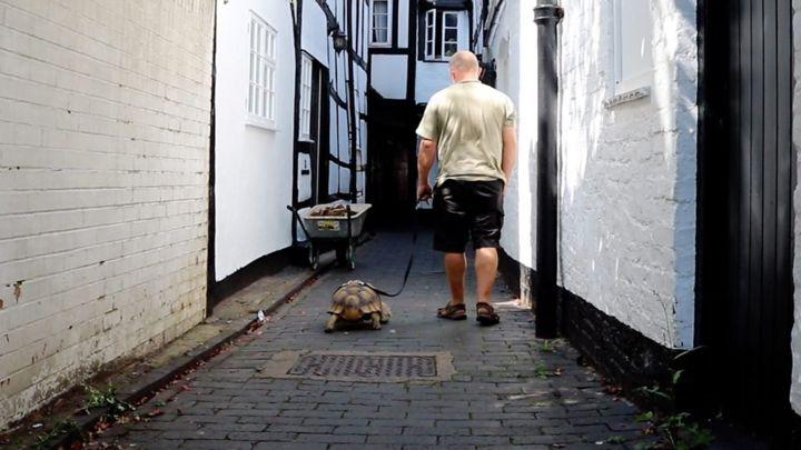 I když se seznámili na síti sítí, bydlí nedaleko od sebe v hrabství Gloucestershire.