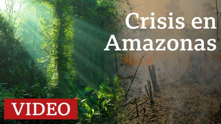 Incendios en el Amazonas: por qué importa esta región natural y lo que se sabe de cómo empezaron los incendios