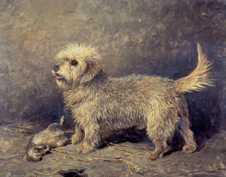 الكلب كالام الذي تبلغ قيمة إرثه الفني 2 مليون جنيه استرليني