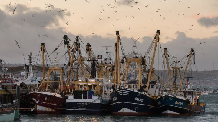 Will the UK and EU reach a Brexit deal on fishing? - BBC News