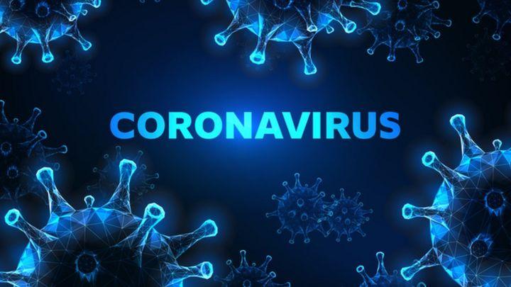 ¿Qué características de los seres vivos tienen los virus?