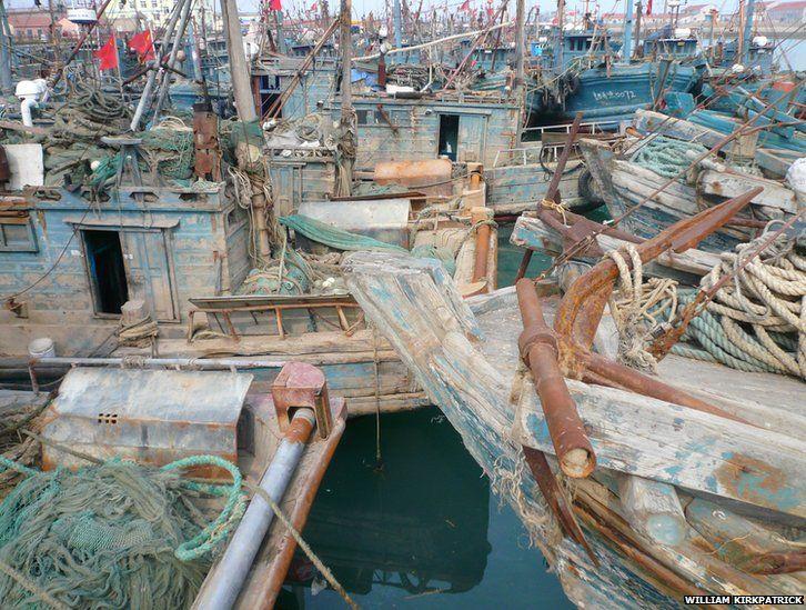 Fishing boats in Huangdao, Qingdao, China