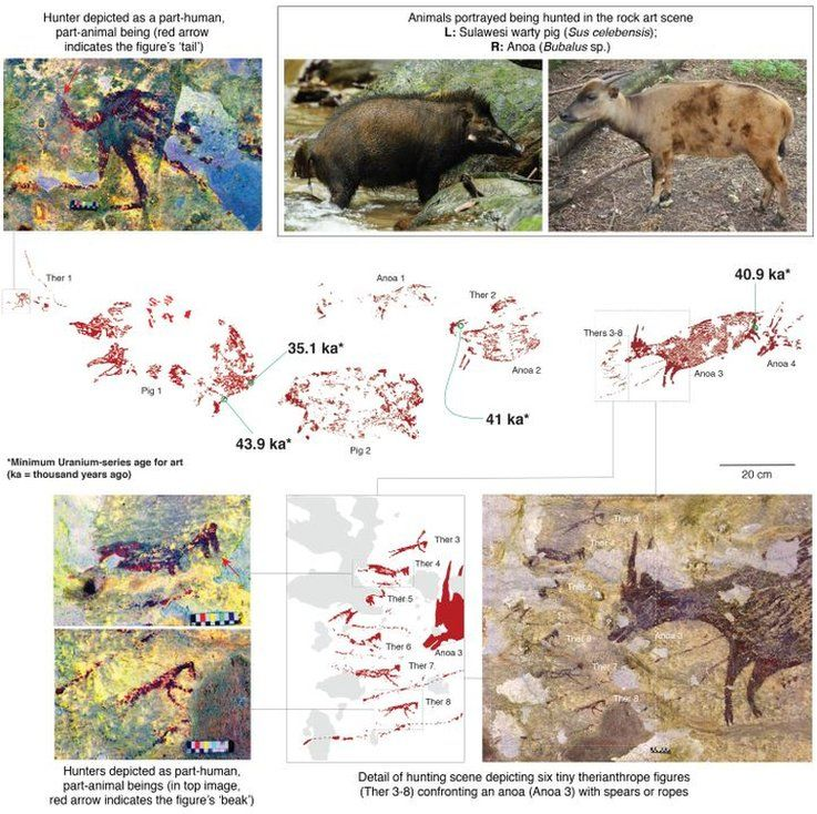 "A graphic issued by Griffith University, explaining the paintings. ""Ther"" refers to therianthropes - the animal / human figures"
