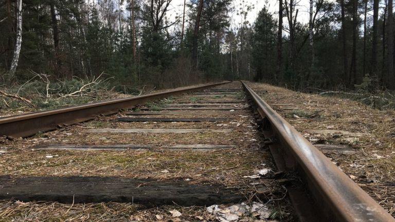 C'est la forêt de Bronnaya Gora où les derniers Juifs de Brest ont été emmenés et assassinés.