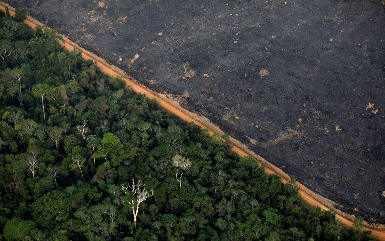 An aerial view shows a deforested plot of the Amazon near Porto Velho on 17 September 2019