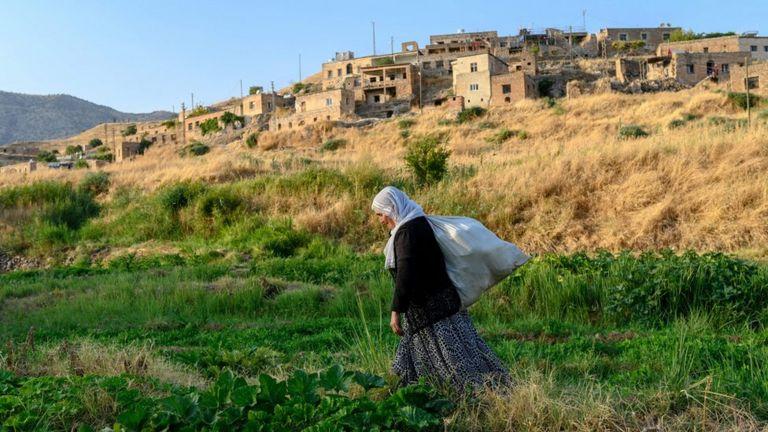 Dargeçit'e bağlı Çavuşlu (Zewik) köyü
