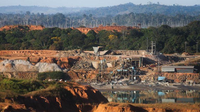 Вырубка в бассейне Амазонки ведет к изменению климата. Всемирный банк дал Бразилии денег на высадку 70 млн деревьев