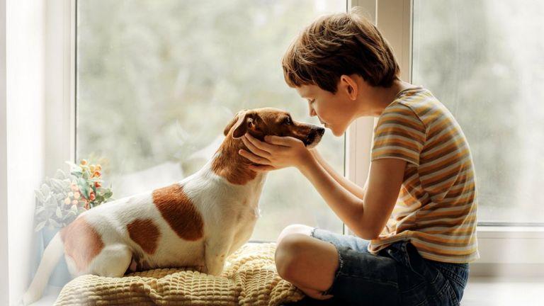 Собаки взрослеют необыкновенно быстро