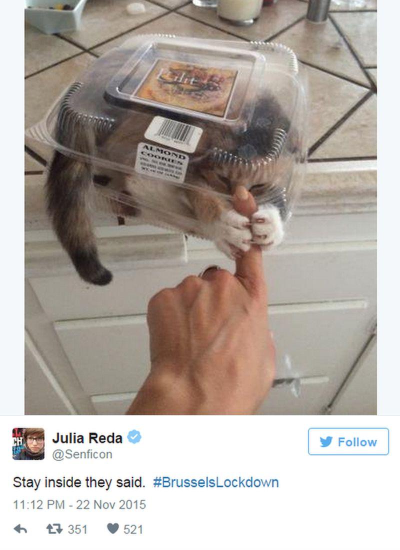 Julia Reda tweets: Stay inside they said. #BrusselsLockdown