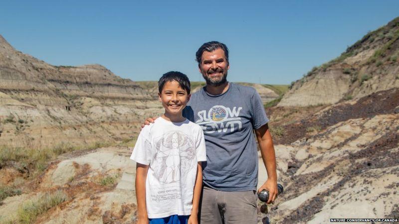 мальчик нашел скелет динозавра
