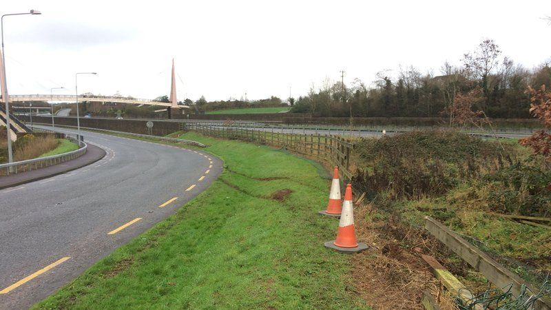 The car driver is believed to have struck a fence on the Old Dublin Road in Cork