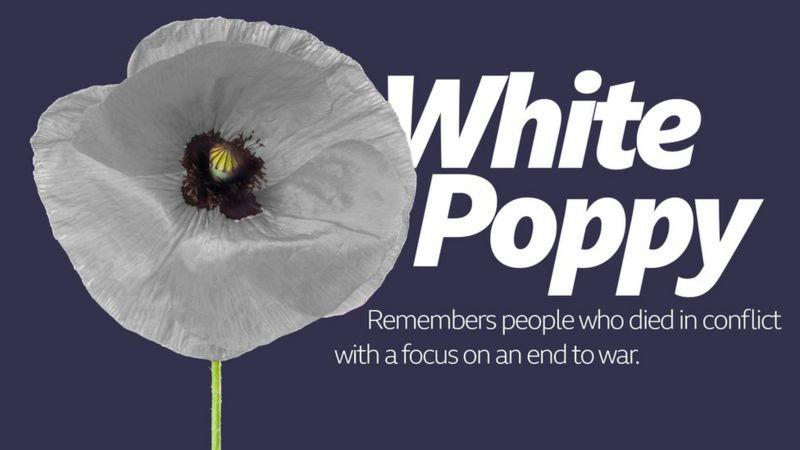 White Poppy.