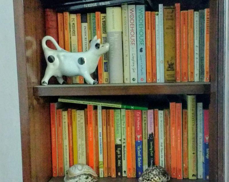 Sushmita Sen Gupta's bookcase