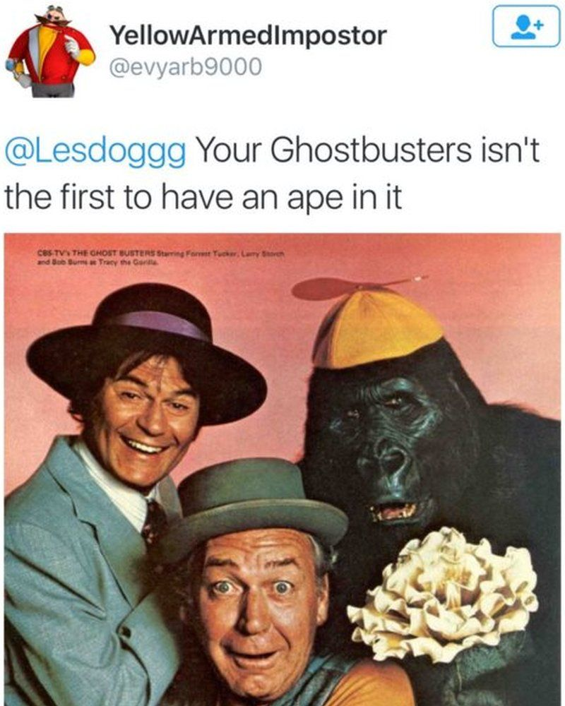 "Image of tweet showing a gorilla, with comment: ""Your Ghostbusters isn't the first to have an ape in it."" = July 2016"