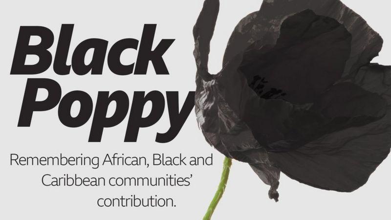 Black Poppy.