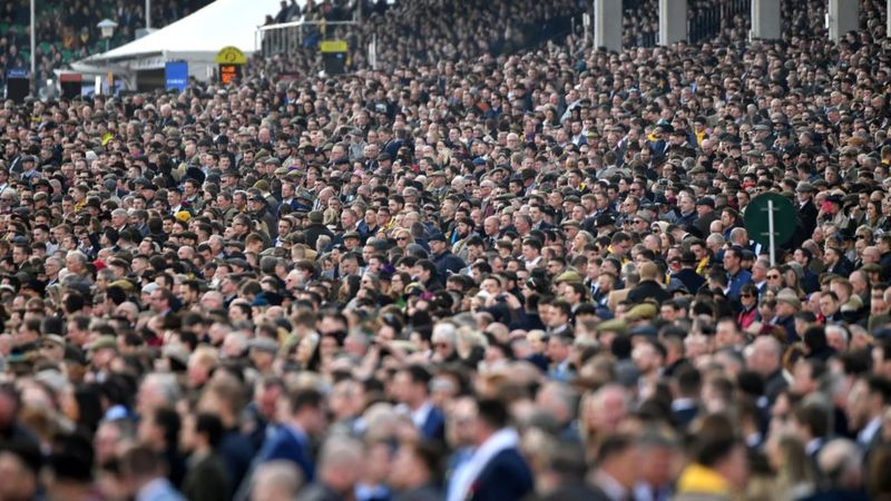 Crowd at Cheltenham Festival