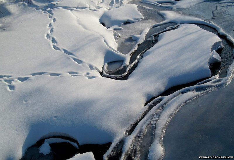 Melting streams in Vermont, USA