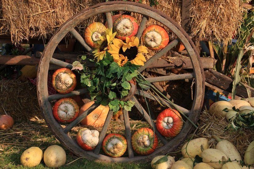 Pumpkins inside the spokes of a wheel
