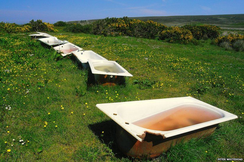 Old baths in a field