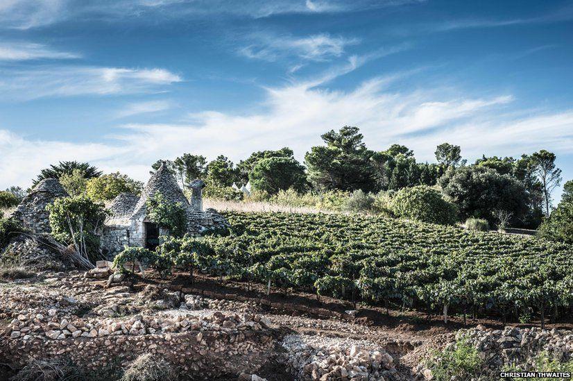 Trulli buildings in Puglia, southern Italy