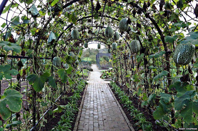Rosemoor gardens in north Devon