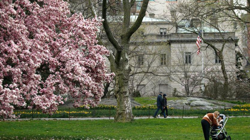 một bà mẹ đưa con ra công viên Central Park ở thành phố New York