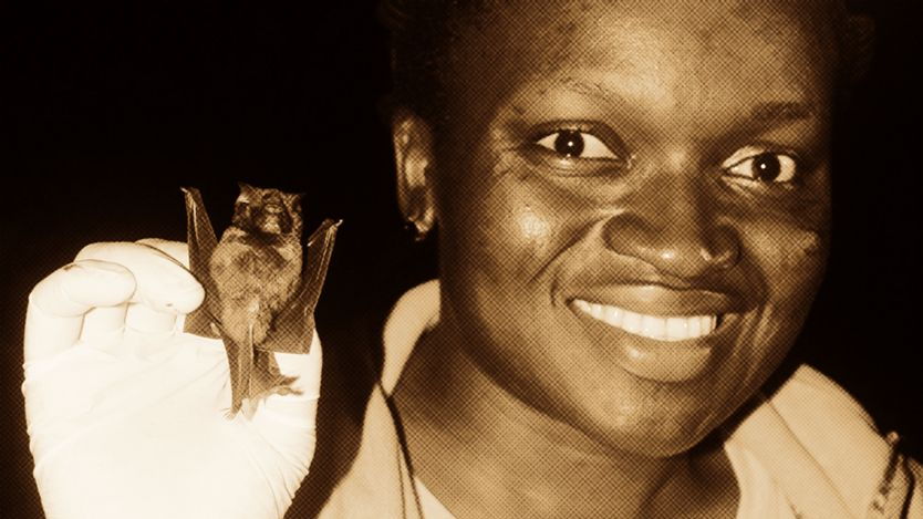 Bat conservationist Iroro Tanshi smiling while holding a bat