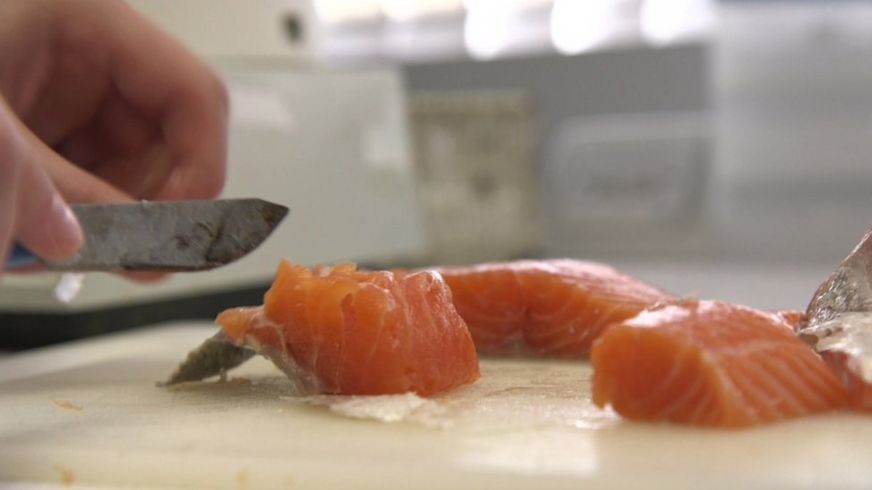 https://ichef.bbci.co.uk/news/872/cpsprodpb/3C6D/production/_91096451_salmon.jpg