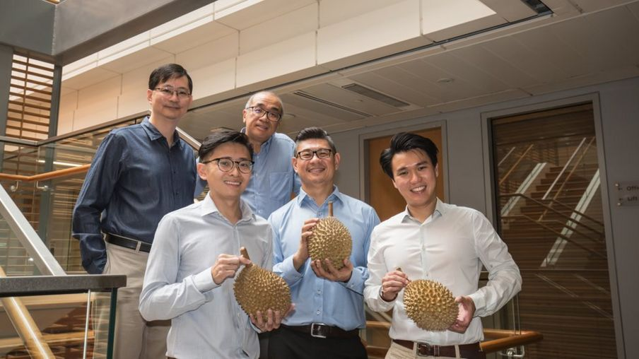 The team was driven by a 'strong scientific curiosity' and of course, their love for durians. Image: Dr Kevin Lim/BBC