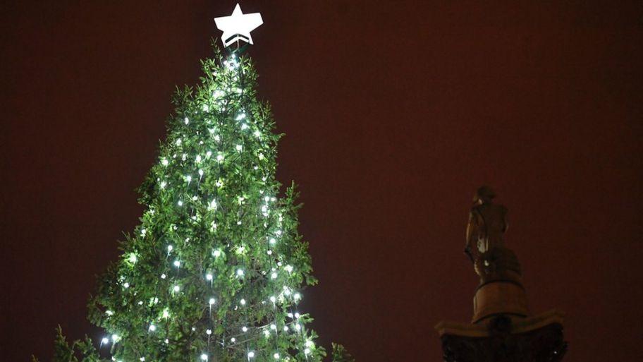 Oh Christmas Tree Oh Christmas Tree.Oh Christmas Tree Oh Christmas Tree We Really Want Your
