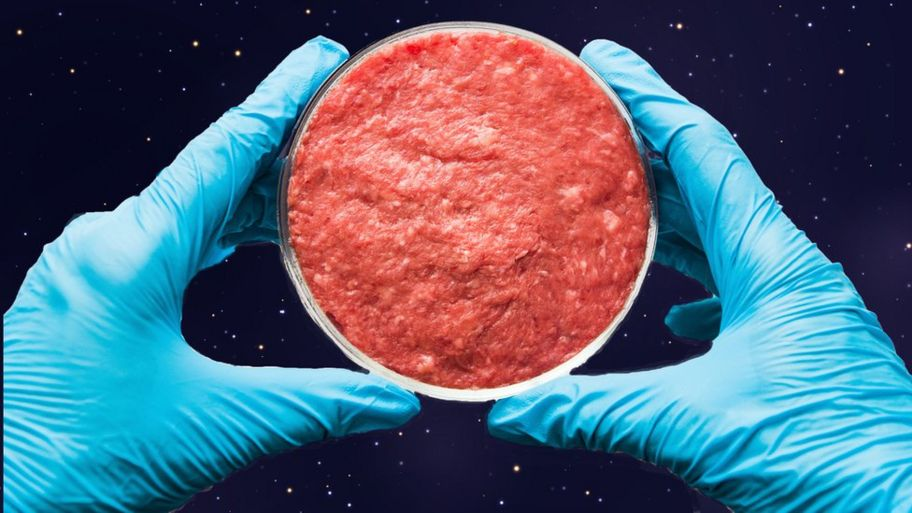 Image result for scientists made fake meat in space