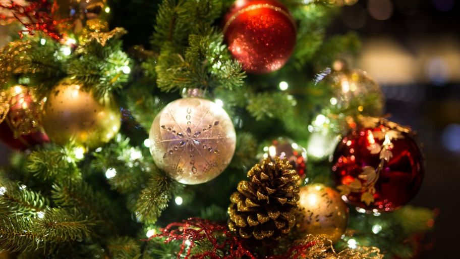 Christmas Trees Images.Why Do We Have Christmas Trees Cbbc Newsround
