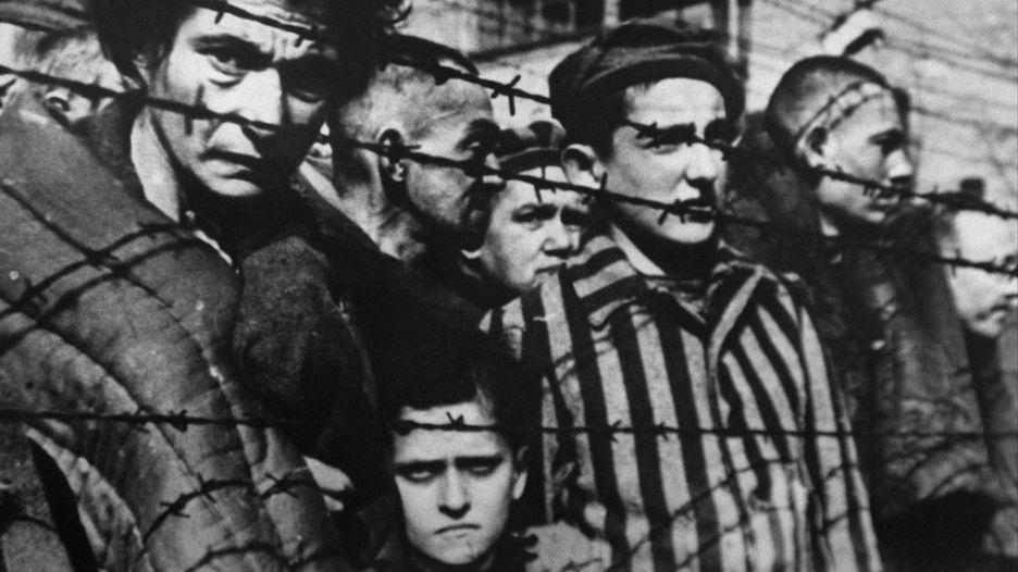выжившие в Освенциме