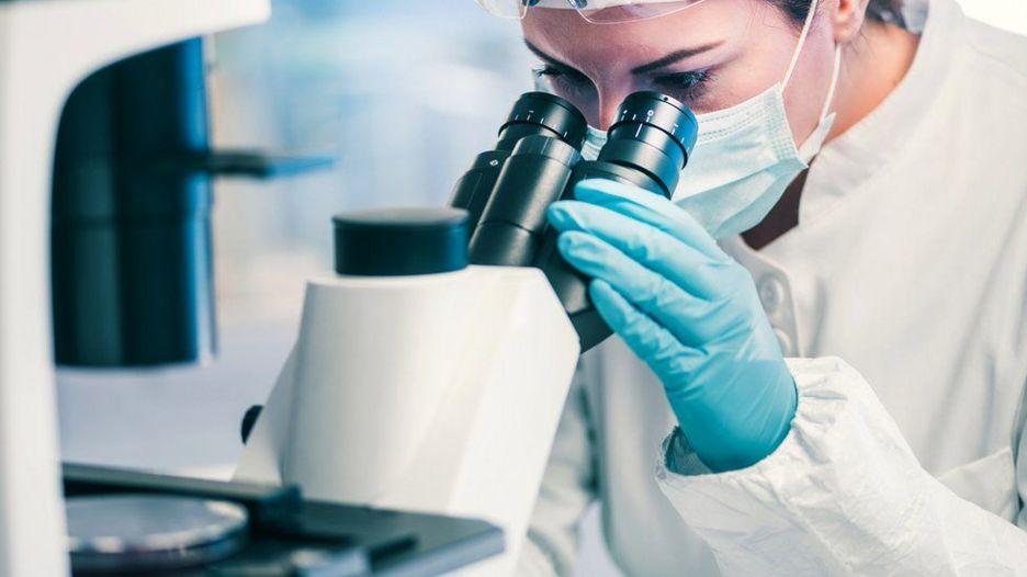 Pesquisador que analisa uma amostra através do microscópio