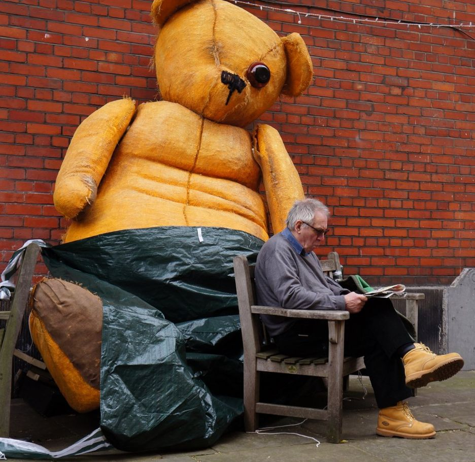 A man reads in front of a large teddy bear