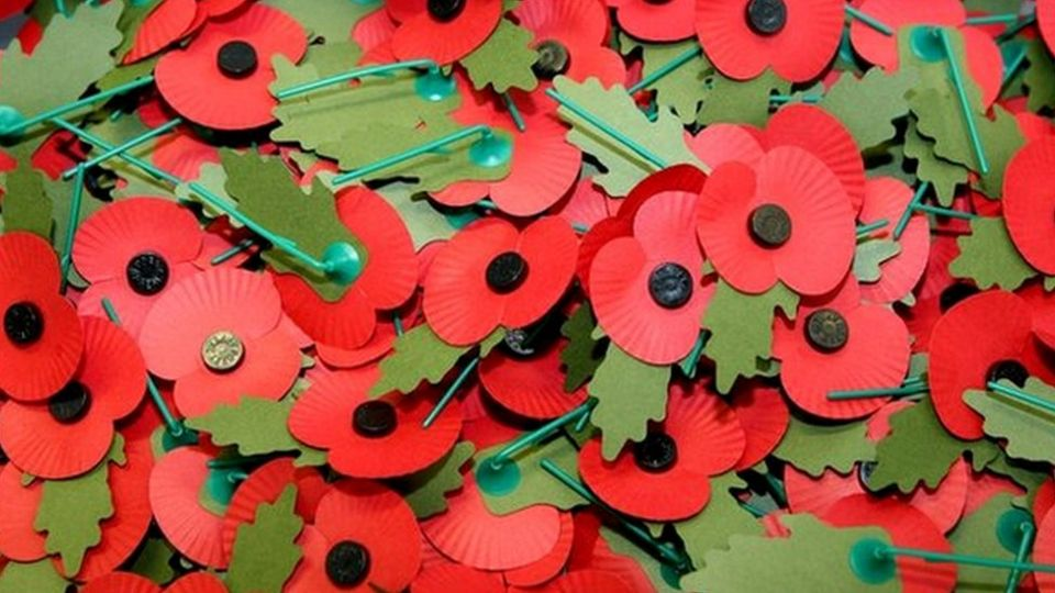 Why Do People Wear Poppies Cbbc Newsround