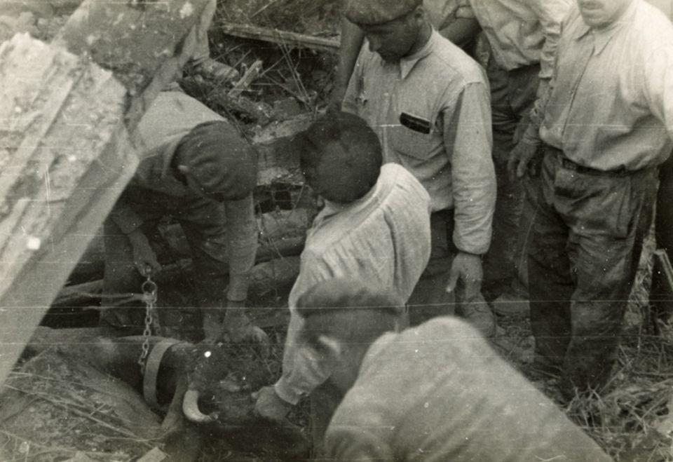 Foto del Centro de Documentación sobre el Bombardeo de Gernika.