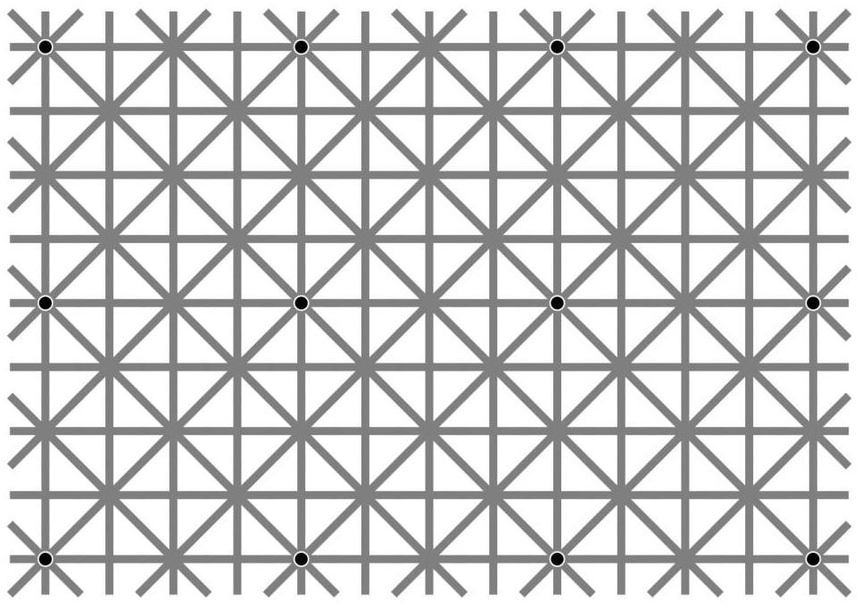 Ninio, J. and Stevens, K. A. (2000) Variations on the Hermann grid: an extinction illusion. Perception, 29, 1209-1217
