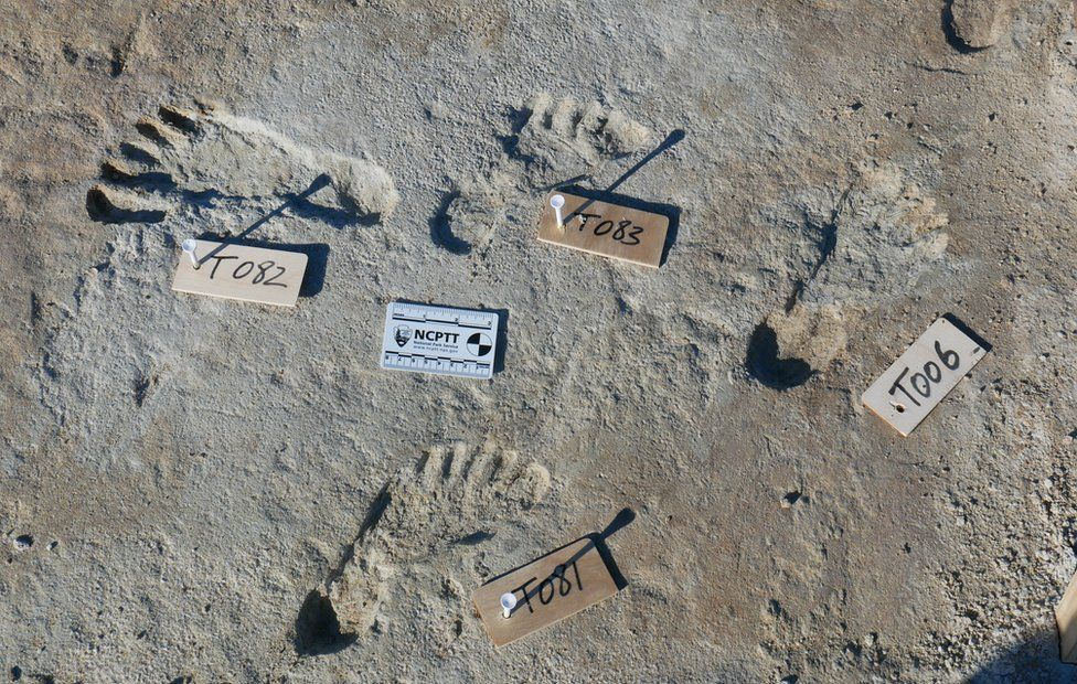 Footprints in New Mexico are oldest evidence of humans in the Americas