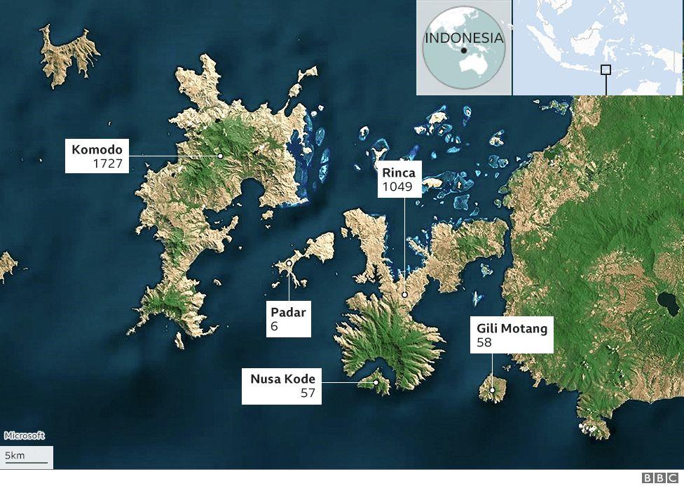 Mapa que muestra las islas y los números de dragones de Komodo del parque nacional