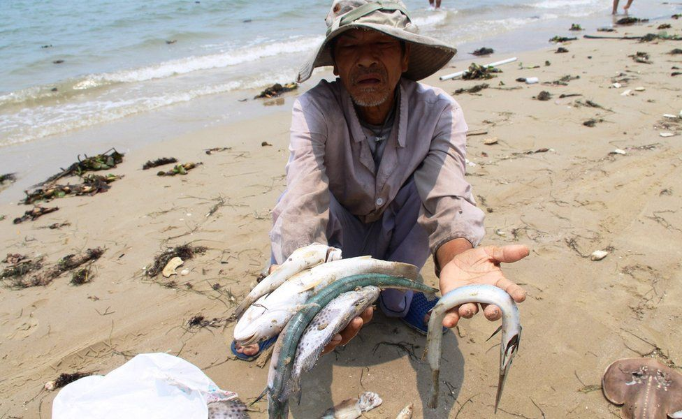 A villager shows dead sea fish he collected on a beach in Phu Loc district, in the central province of Thua Thien Hue on April 21, 2016