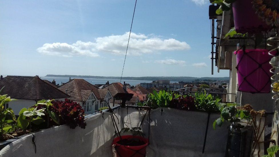 Balcony garden with sea view