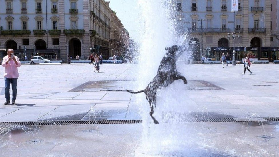 A dog cools off in a fountain in Turin, Italy - 27 June