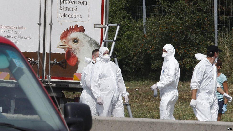 Forensic officers work at a truck inside which were found a large number of dead migrants on a motorway near Neusiedl am See, Austria (August 27, 2015)