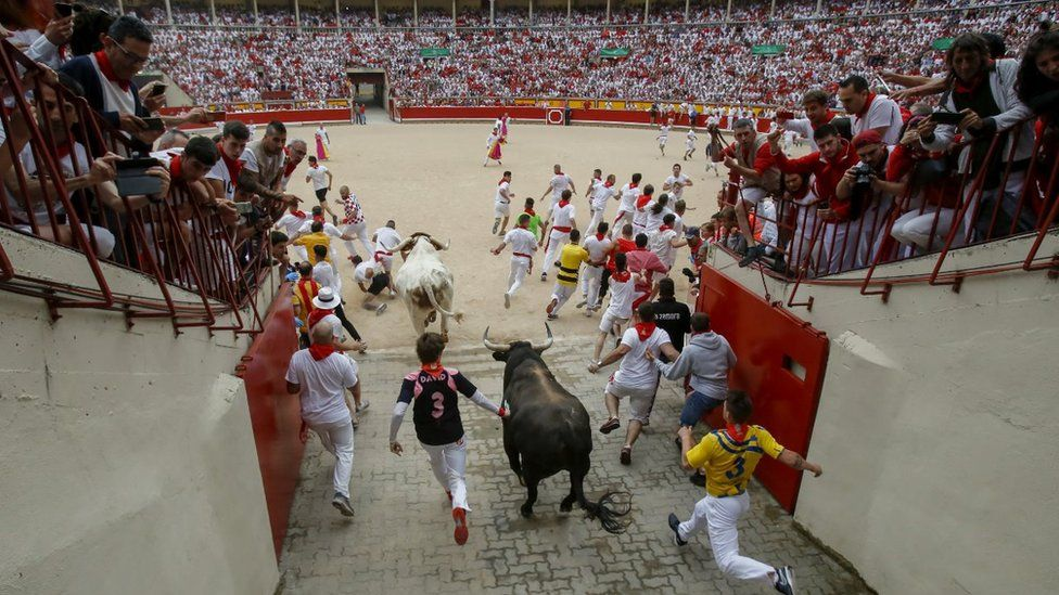 Revellers run with Puerto de San Lorenzo's fighting bulls as they enter the bullring during the second day of the San Fermin Running of the Bulls festival