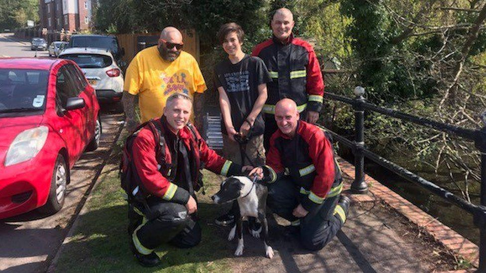 The fire crew with the dog after the rescue