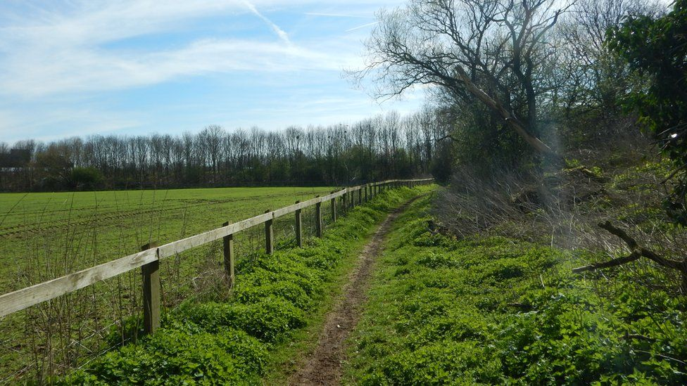 The Colne Valley Trail